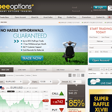 BeeOptions Review